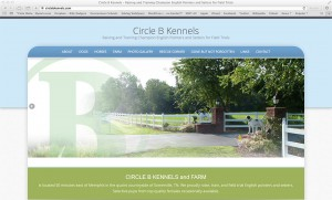 Circle B Kennels